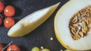 Semente de melão, benefícios e malefícios
