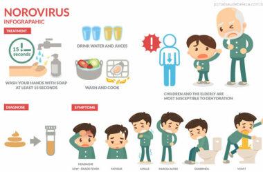 Vírus que podem contaminar os alimentos